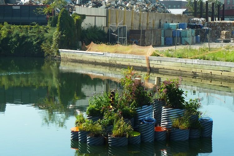 gowanus-canal-growonus-Balmori-Associates-released
