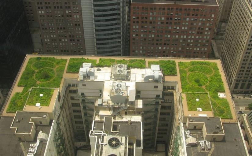 O lege din Franța cere plante sau panouri solare pe acoperișurile noilor clădiri