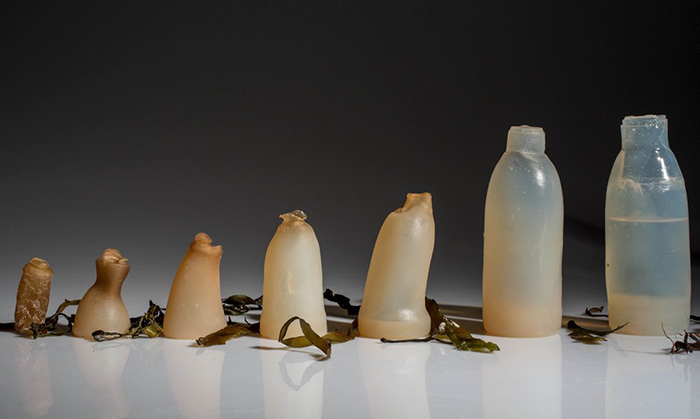 water-bottles-emgn-1