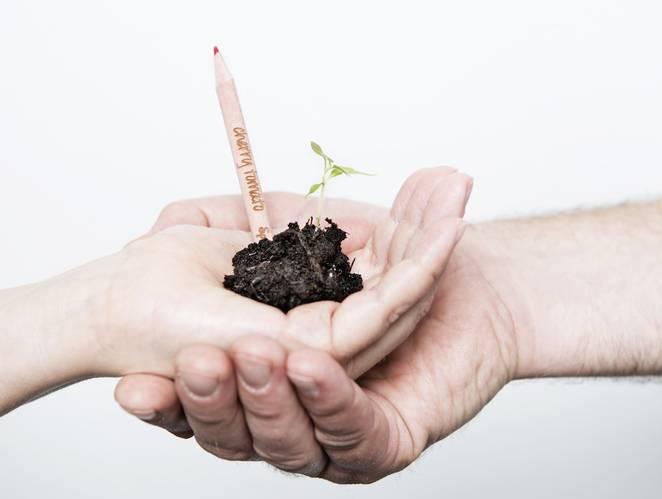 Creioane plantabile